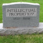 The intellectual property in general